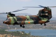 BHELTRA V: Spain's Chinooks