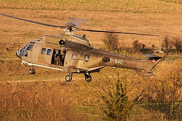 Aerospatiale AS-532UL Cougar - T-342 - Swiss Air Force