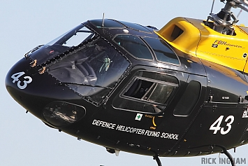Eurocopter Squirrel HT2 - ZJ243 - AAC