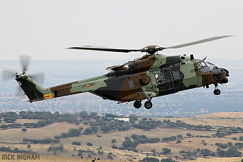 NHIndustries NH90 - HT.29-03/ET-803 - Spanish Army