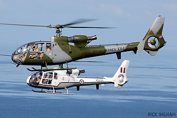 Westland Gazelle HT2 - XX436 - Royal Marines