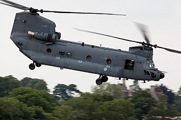 Boeing CH-47F Chinook - D-890 - RNLAF