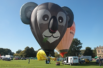 "Ultramagic B70 Balloon - G-DAAY ""Adelaide"""