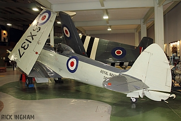 Supermarine Seafire F17 - SX137 - Royal Navy