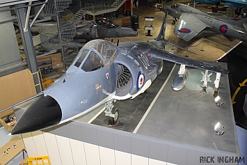British Aerospace Sea Harrier FRS1 - XZ493/001 - Royal Navy