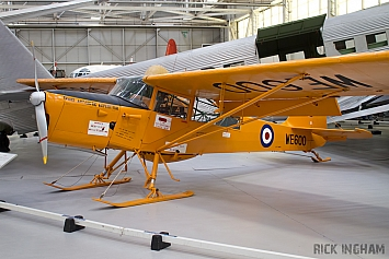 Auster T7 Antarctic - WE600 - RAF